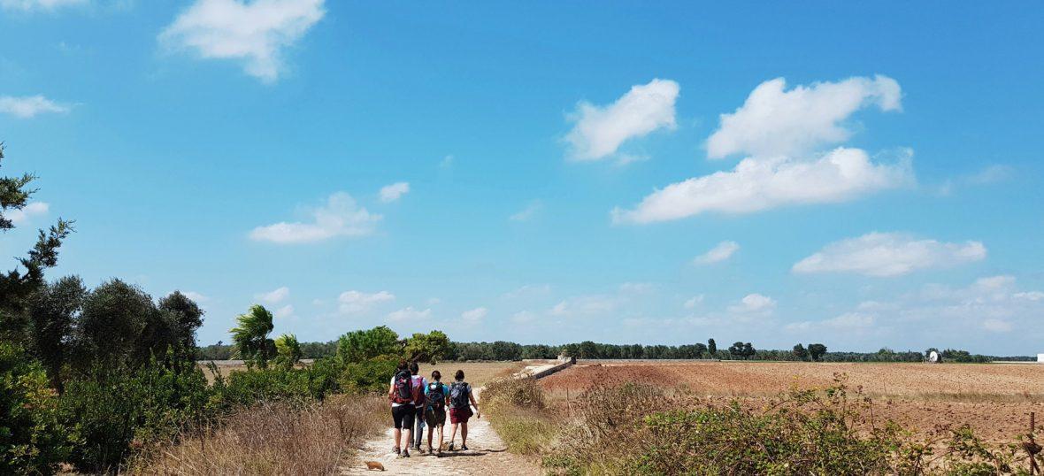 Copertina del post Camminare a Sud-est per raccontare un territorio. L'esperienza di Map